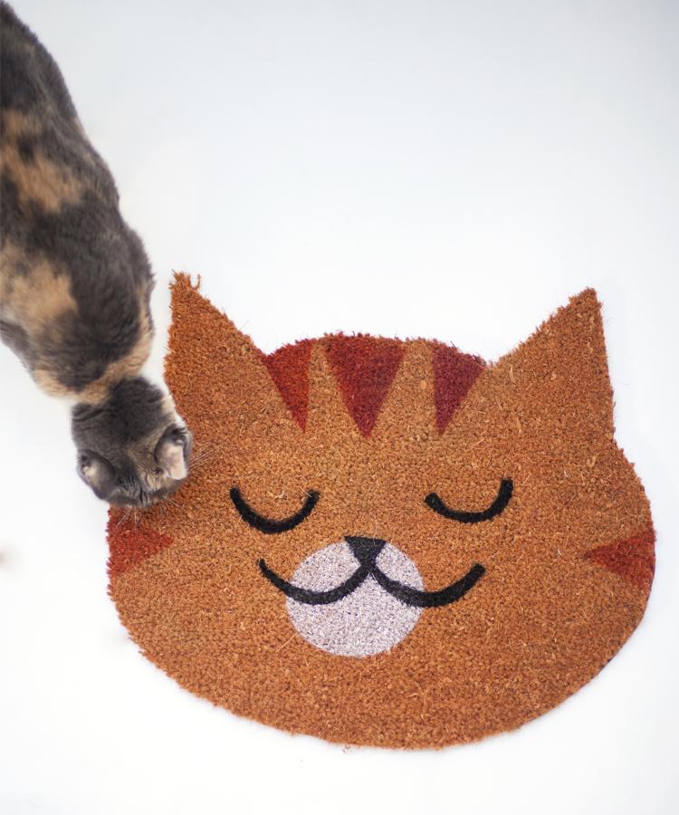 Felpudo Gato Naranja